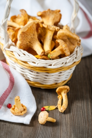 Basket of ginger chanterelles on rustic wooden background photo