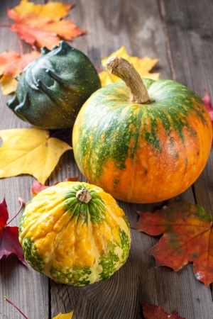 Autumn pumpkins with leaves on wooden board photo
