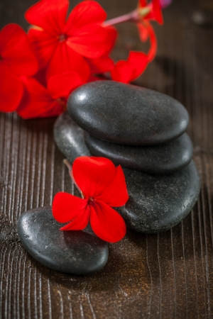 Spa stones and red flowers photo