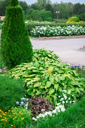 Colorful landscaped formal garden. Beautiful blooming Garden.