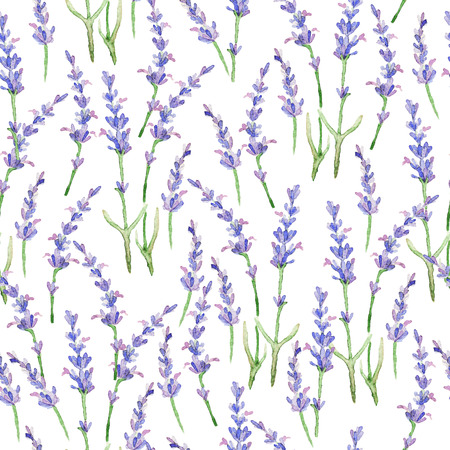 Watercolor pattern with Lavender. Stock Photo
