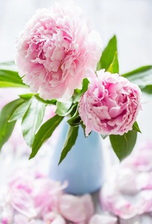 Pink Peonies In Vase On Wood Background Stock Photo Picture And