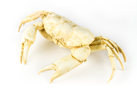 Decorative statuette crab, isolated on white background. Stock Photo