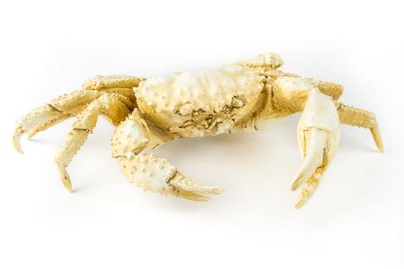 statuette: Decorative statuette crab, isolated on white background. Stock Photo