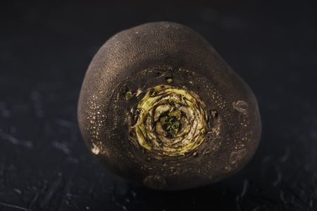 Tuber black radish on a black concrete
