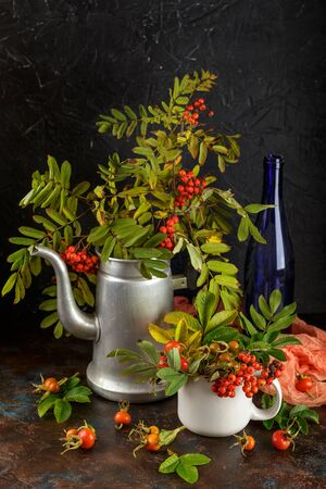 Rowan branches in metal old coffee pot and in cup and dogrose berries on dark background 写真素材