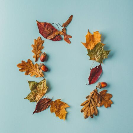 Autumn frame of maple leaves, oak and acorns on a blue background. Flat lay, top view, place for text
