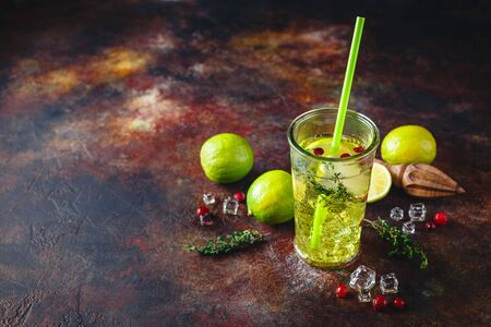 Glass with Lime Lemonade with thyme, cranberry and ice on light background. Refreshing summer homemade Alcoholic or non-alcoholic cocktails or Detox infused flavored water. Space for text.