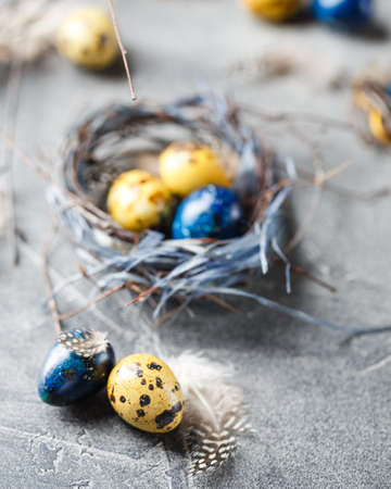 Colored yellow and blue Easter quail eggs in small nests.