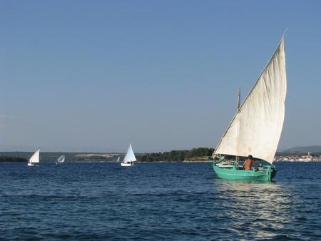 Old boat regatta