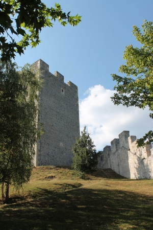 Castle - Celje - tower Editorial