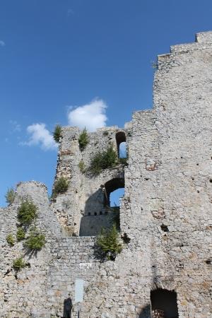 Castle - Celje - detail Editorial