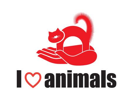 I love animals - cat