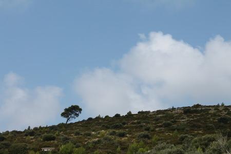 Lastovo hill