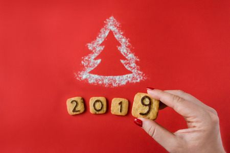 Flour Silhouette Christmas Tree with cookies digits 2019 on red background with women hand. Delicious bakery sweet confectionery Christmas card. Idea of merry new year xmas 2019 holiday