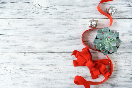 Christmas composition, mockup with green cactus aloe succulent plant, red ribbon, bow and silver Christmas ornament on white background. Modern xmas background mockup