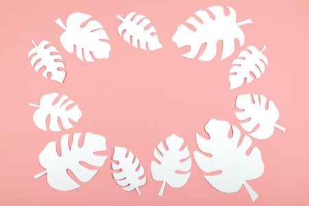 White paper Monstera leaves on pink background with copy space. Summer tropical exotic palm plant frame flat lay, top view Stock Photo