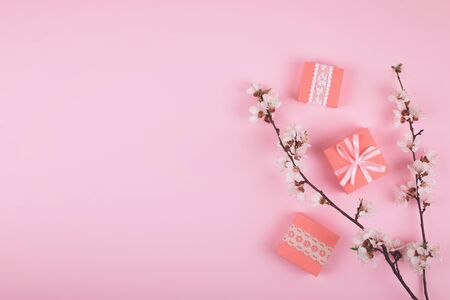 Flat lay with pink gift boxes and blooming cherry sakura flowers on pastel background. Birthday gift girl pink background with copy space. Reklamní fotografie