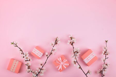 Pink Flat lay with lace gift boxes and blooming cherry sakura flowers on rose background. Female festive gentle background with copy space.