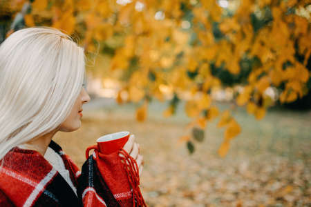 Beautiful blonde Woman with Autumn Leaves on Fall Nature Background. Alone brooding woman in white sweater and red plaid holding cup and enjoys nature. Imagens