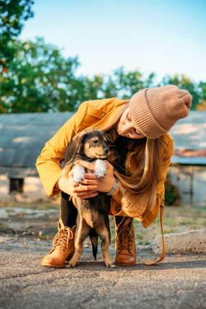 Woman Volunteer meeting homeless dog puppies in fall nature background. Pet love, caring for a pet and animal adoption concept. Stock Photo