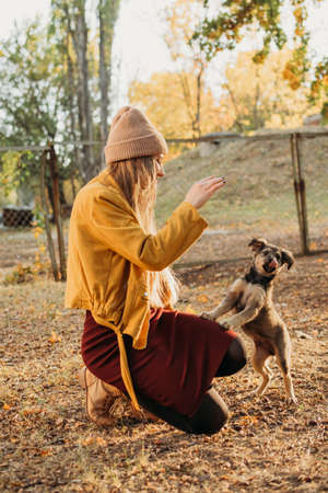 Woman Volunteer meeting homeless dog puppies in fall nature background. Pet love, caring for a pet and animal adoption concept.