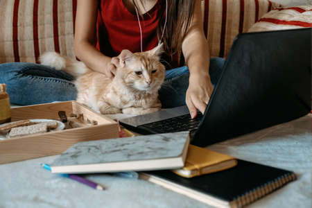 Home office, work space, work from home concept. Young woman with laptop and cat working at sofa. Flexible work hours.