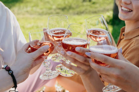 Summer party time, summer drinks cocktails, gathering of friends. Friends hands toasting wine drinks. Young people having fun together at picnic and holding glasses with alcohol drinks 免版税图像