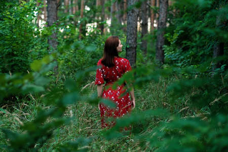 Save and Plant Trees, Save Earth and Nature, Stand For Trees, Save Forests and Heal the Climate. Woman in a red dress walking in forest, hugging trees and touching the trunks