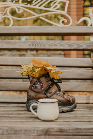 Hello fall, autumn season, fall mood. Yellow maple leaves in boot and enamel cup on bench in fall autumn park Stock Photo