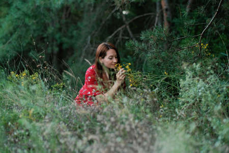 Identification, collection and preparation of medicinal plants. Cultivation and Processing of traditional Medicinal Plants. Woman in rustic dress collects herbs for immunity in meadow near forest