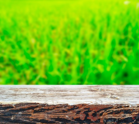 yellow  green: Wood plank over green grass bokeh background, spring and summer season