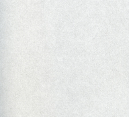 White clean blank paper texture background. Closeup