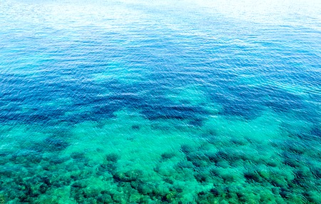 azul turqueza: Underwater sea background. Blue transparent turquoise water. Tropical sea clean water.