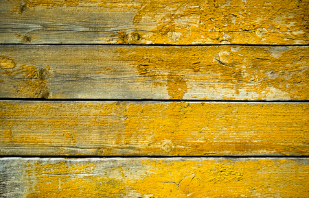 Painted natural yellow wood board background texture. Closeup