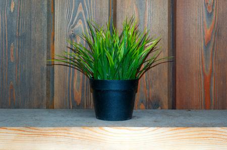 artifical: artifical grass in pot on desk. Fake grass decor