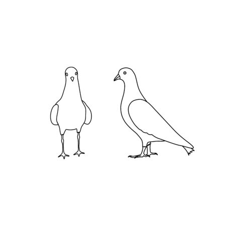 Outline pigeons dove icon vector set isolated on white background
