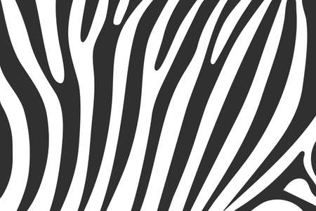 Vector zebra wavy concept abstract flat background 矢量图片