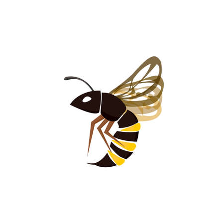 Wasp insect icon vector Vettoriali