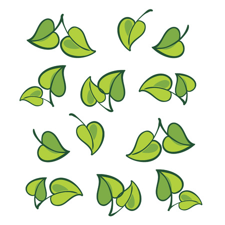 Vector leafs, isolated Illustration