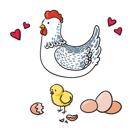 Hen and her seven eggs on a white background