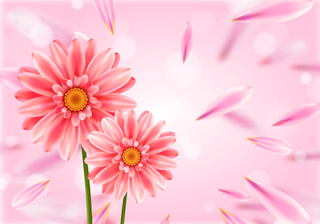 Gerbera flower on bright pink background. vector illustration. Ilustração