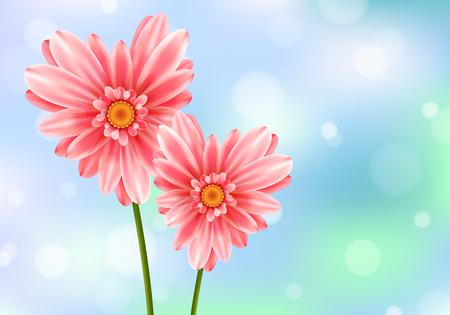 Gerbera flower heart vector card.