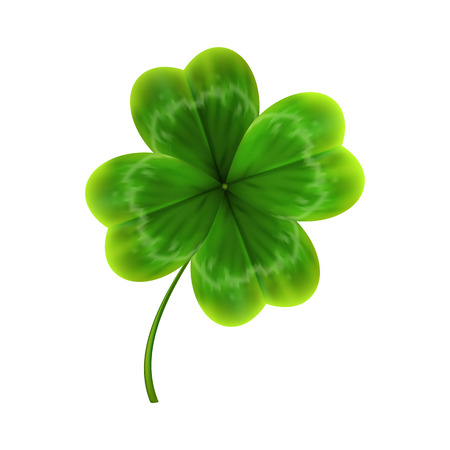 green leave of clover. realistic 3d vector illustration