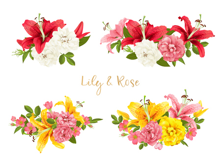rose and lily set. vector card. Illustration