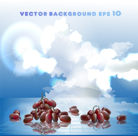 background with grapes  Stock Vector - 10318498