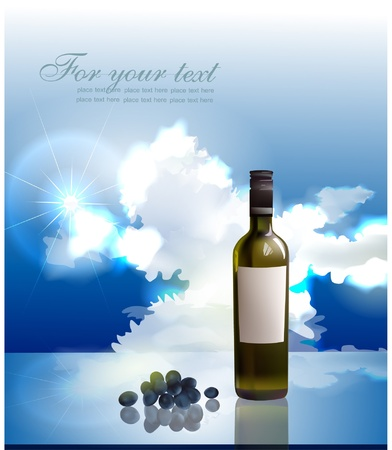 bottle of wine Stock Vector - 10375480