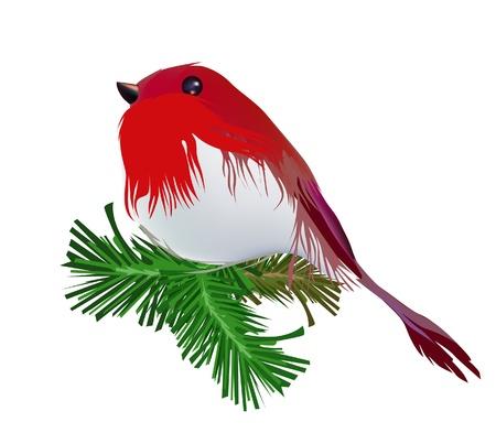 Robin, Christmas bird Vector