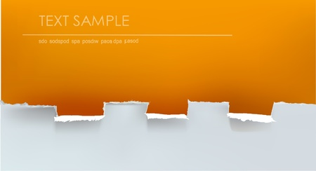 ripped paper background Vector