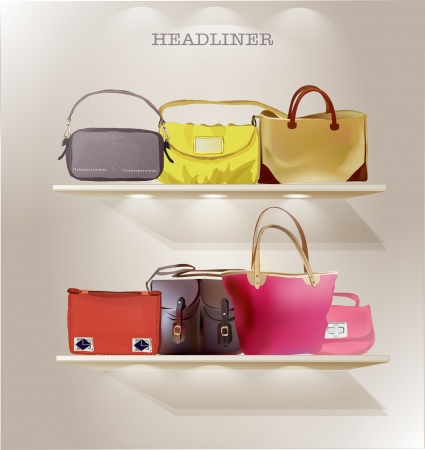 store display: bags on the shelves